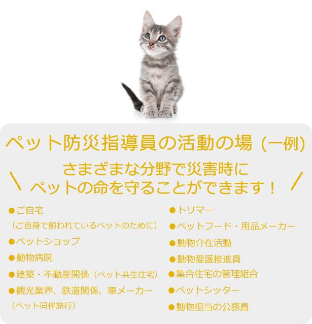 ペット防災指導員の活動の場 (一例)さまざまな分野で災害時にペットの命を守ることができます!