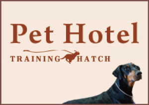 Training Hatch Pet Hotel