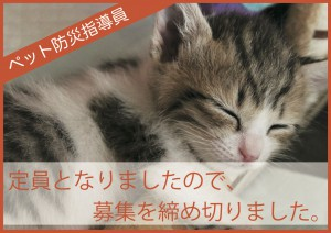 *定員となりましたので、募集を締め切りました。5/1「ペット防災指導員 東京会場」