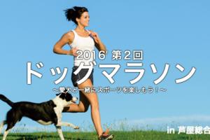 5/15(日) 第2回ドッグマラソン2016 in芦屋市総合公園で出展決定!!