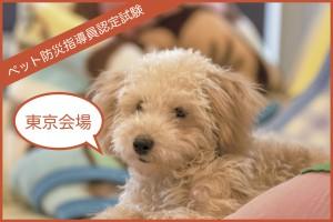 【東京】1月および2月 ペット防災指導員認定試験