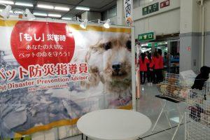 Pet博 2017 in広島にご参加頂き、誠にありがとうございました。