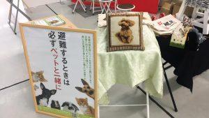 Pet博2018 in広島で弊社のブースにお立ち寄りいただき、ありがとうございました!